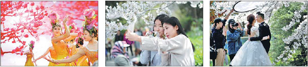 Local culture, flowers, tourism flourish together