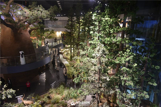 Qingdao Behring Natural History Museum opens
