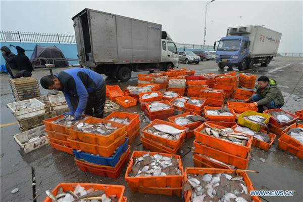 In pics: Winter fishing in China's Shandong